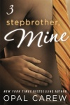 Stepbrother, Mine - Part 3 by Opal Carew