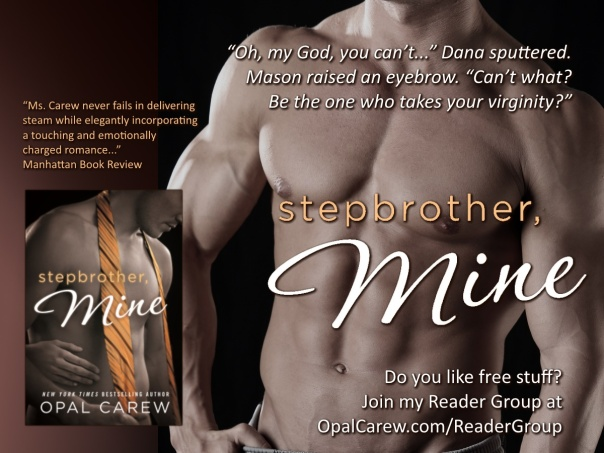 Reader Group - StepbrotherMine - 4