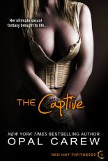 The Captive - new cover