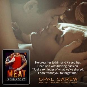 Meat_Teaser7